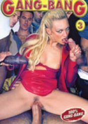 Trans anal brazil 2
