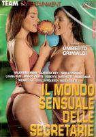 Il mondo sensuale delle segretarie - scène n°2